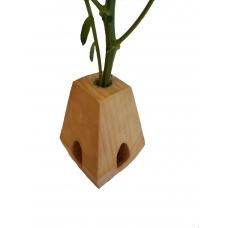 Vaza din lemn cu eprubeta  TIP A - 5ml